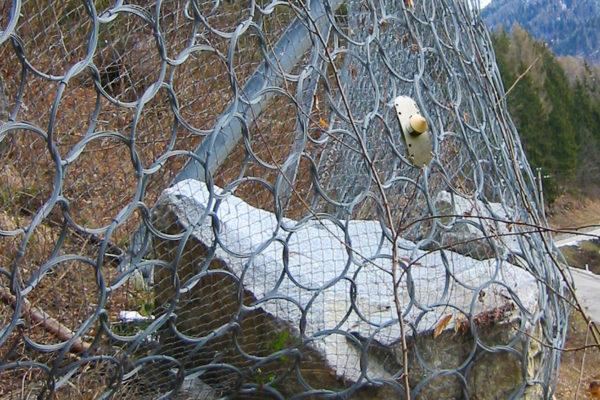 Aartesys GenoSensor Steinschlag Netz
